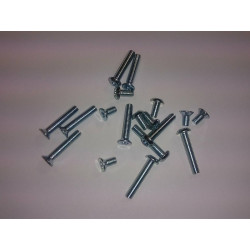 Set of screws for the V2 - torx