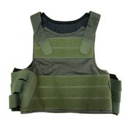 PANTAC Personal Body Armor ( RG )