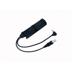 Remote Dual Switch  (2 Plug)